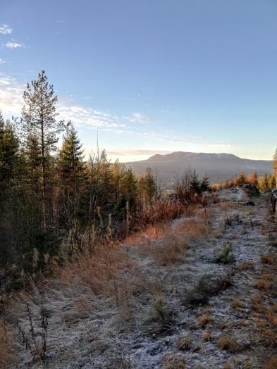 trysil fjellet